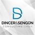 Dincer&Sengün Consulting GmbH